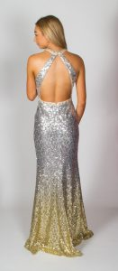 Alyce (Silver Ombre) Back